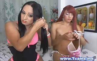 Two Brunette Shemale Jerking Off